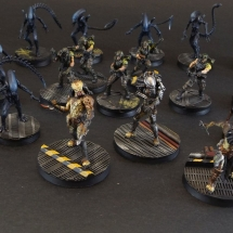 AvP Groupshot
